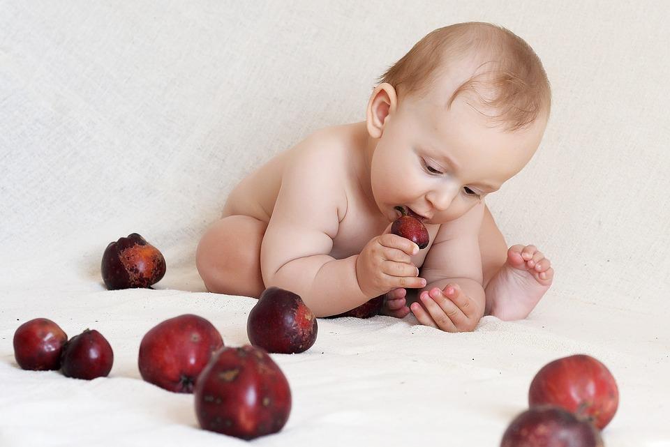 como iniciar as papinhas para o bebê
